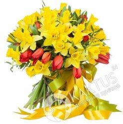 Жёлтые нарциссы и красные тюльпаны.