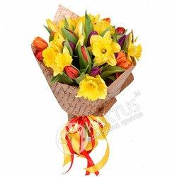 Нарциссы и тюльпаны.
