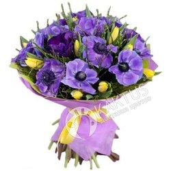 Букет фиолетовых анемонов и жёлтых тюльпанов.
