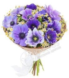 Букет фиолетовых анемонов.