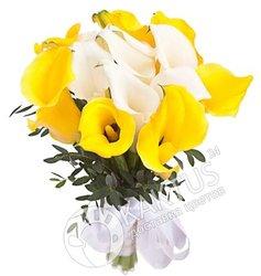 Желтые и белые каллы.