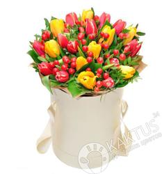 Тюльпаны в СПб.
