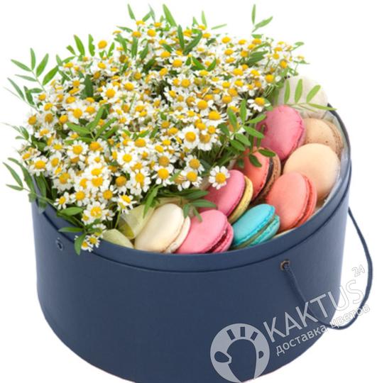 Композиция макаруни с ромашками в интернет магазине kaktus-24.ru