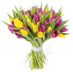 Букет жёлтых и фиолетовых тюльпанов